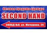 Логотип Новосток ИП Хильченко Л.Н.